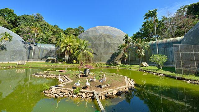 Taman Burung Labuan